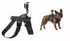 Arnés de perro GoPro de Amazon
